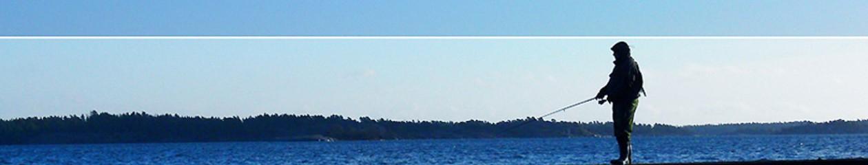 Flugfiskekamraterna