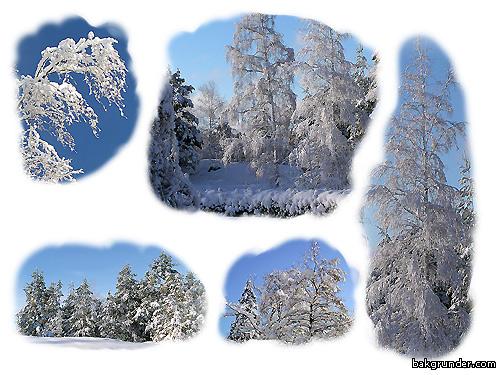 Stämningsfulla vinterbilder med mycket snö