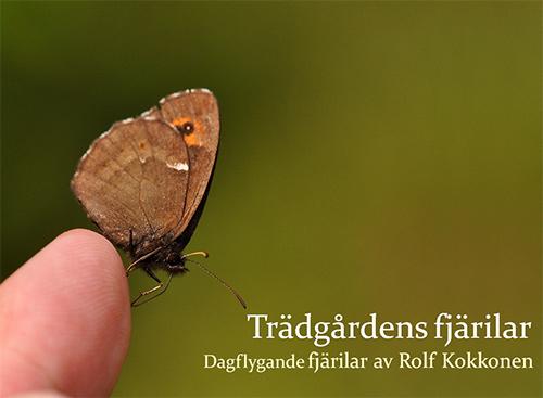 Trädgårdens fjärilar