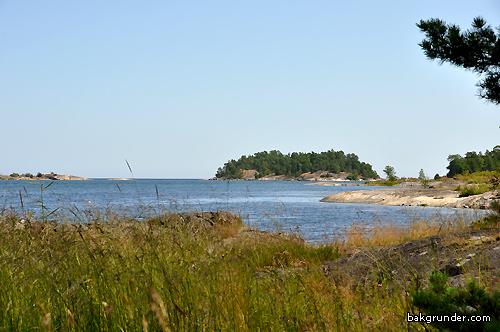 Åsvikelandets naturreservat
