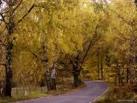 Vacker Höstväg
