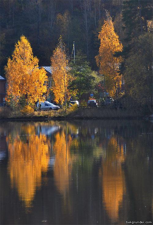 Hösten 2011