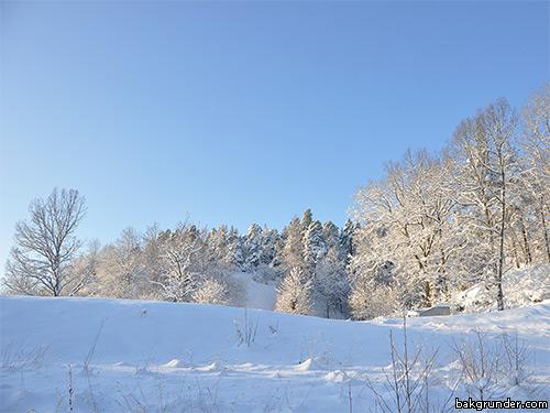 Stämningsfylld vinterbild