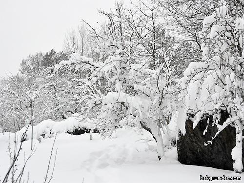 40 cm snö