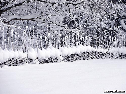 Djupt snötäcke